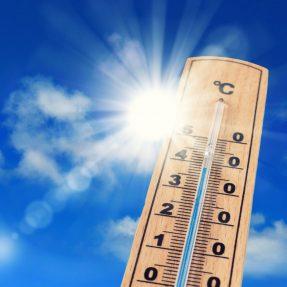 Fortes chaleurs, nos conseils pour mieux les vivre