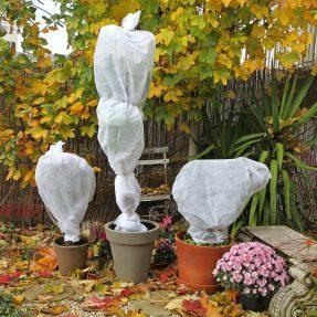Préparez l'arrivée du froid dans votre jardin