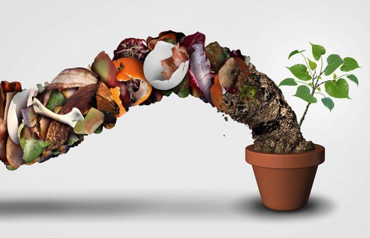 Je pense écologie, je pense économie : comment faire mon compost ?