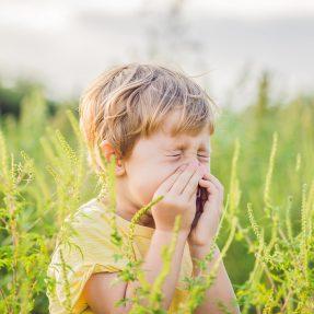 Comment garder ma maison propre avec l'arrivée de la saison du pollen ?