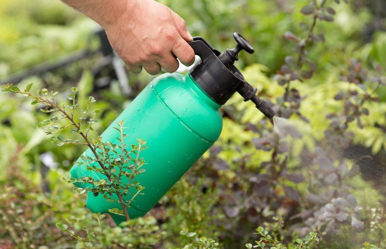Comment fabriquer un désherbant naturel et écologique ?