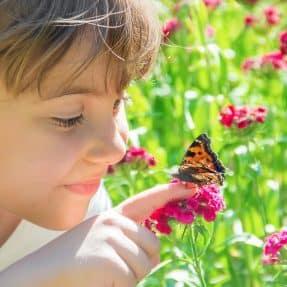 Jardinage : Comment préserver la biodiversité dans son jardin ?