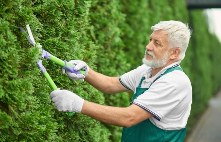 L'aide au jardinage pour les personnes âgées