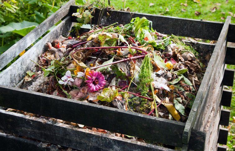 Comment entretenir son jardin tout au long de l'année ?